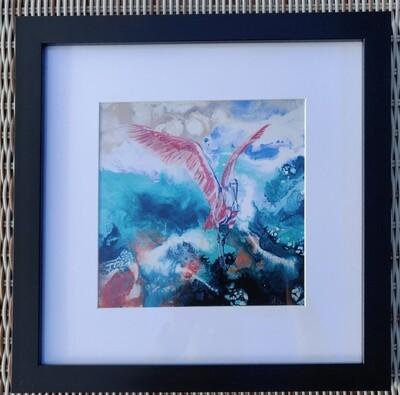 Rosetta Spoonbill Framed Print