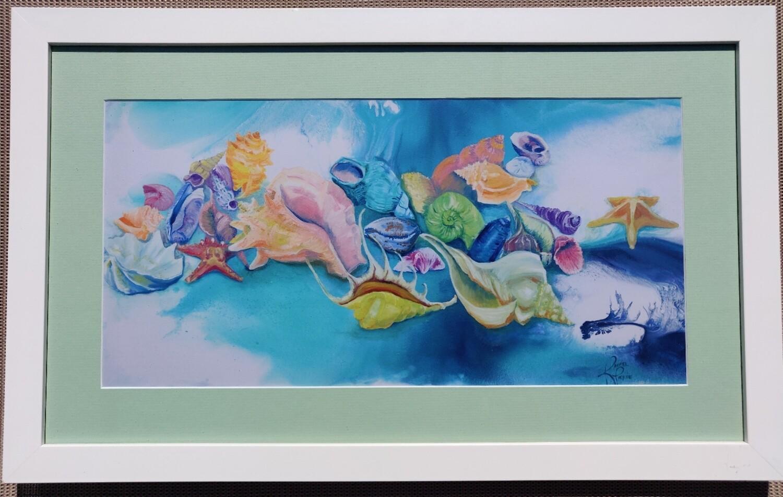 Rainbow Shells Framed Print