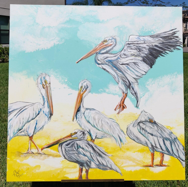 Ding Pelicans