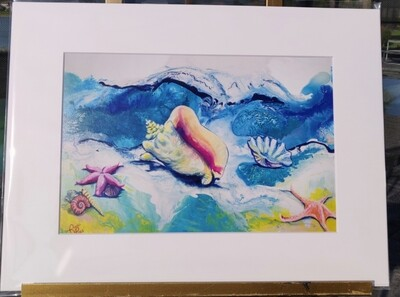 Shells on the shore Matted Print