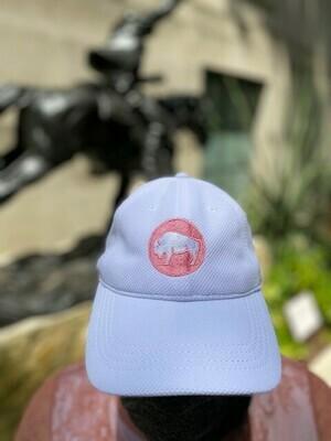 Briscoe Bison White/Pink Cap