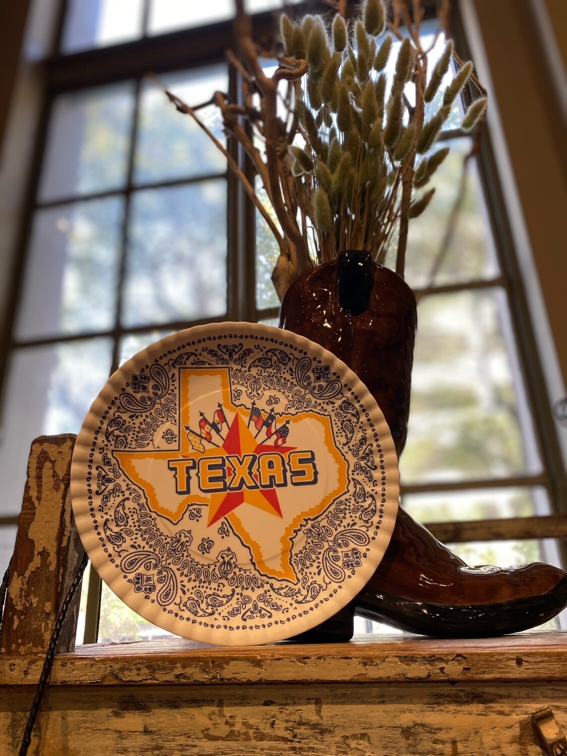 "Texas ""Paper Plate"" Melamine 9"" set of 4"
