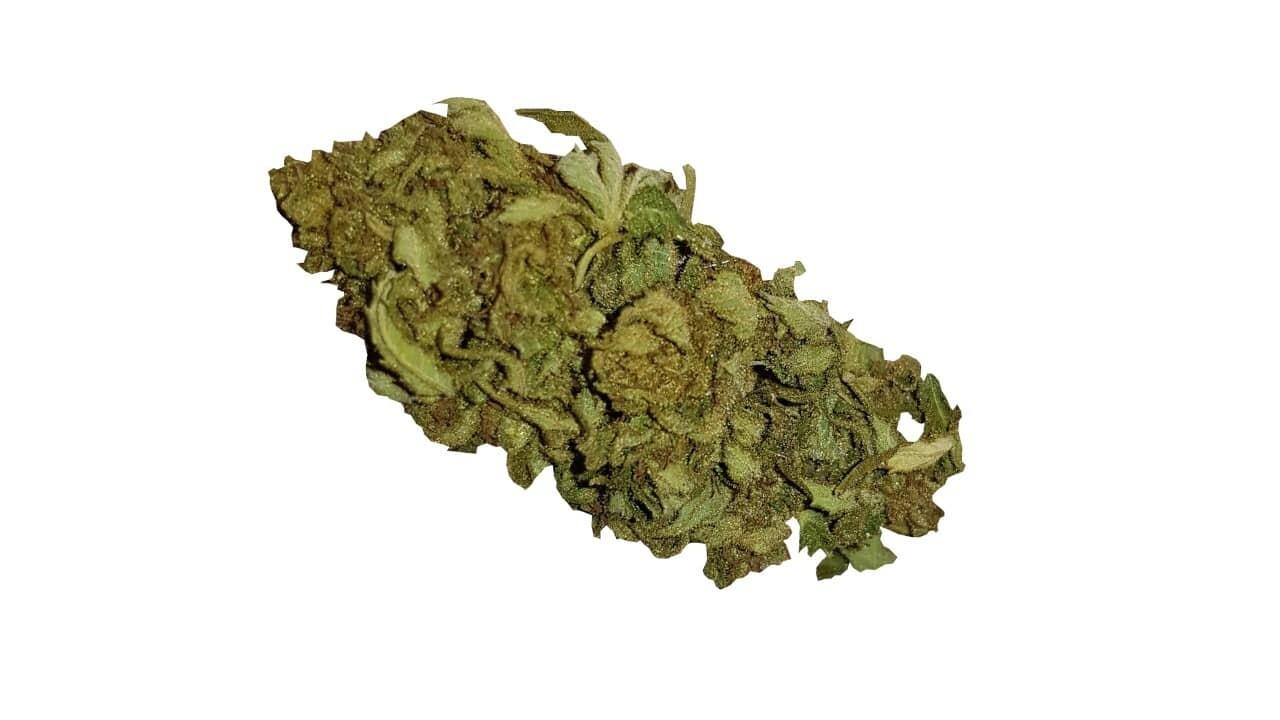 Günstige Cannabis Blüten mit 9% CBD