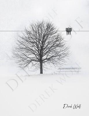 Snow Ghosts Tree