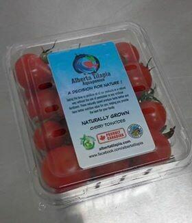 Bulk Cherry Tomatoes 1LBS