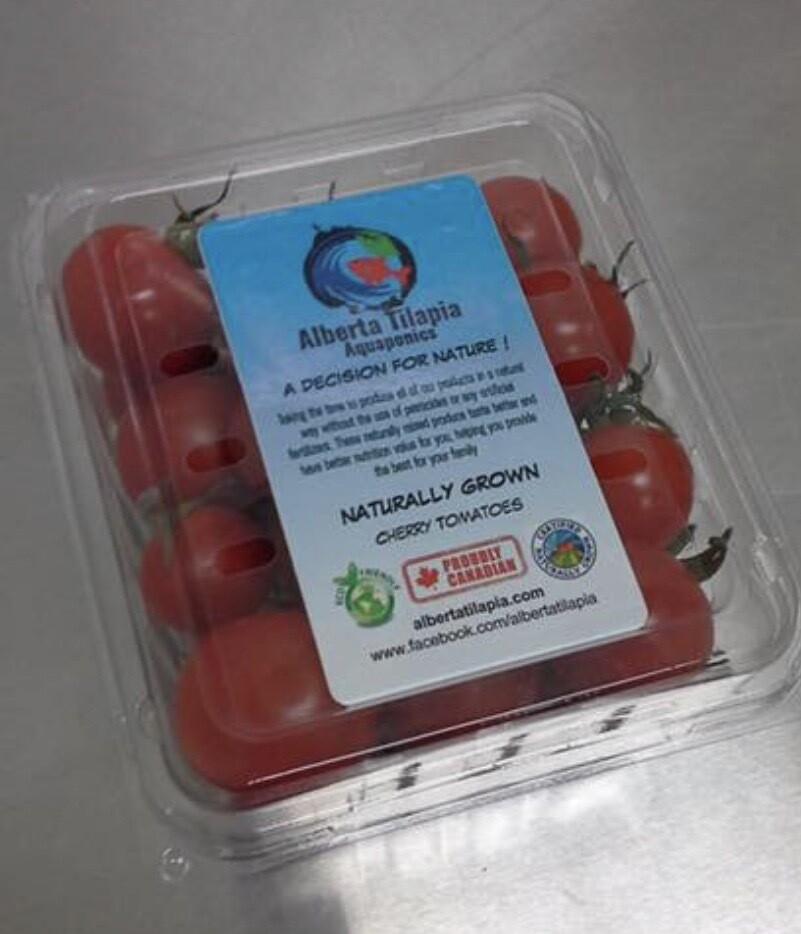 Wholesale Cherry Tomatoes, 12 Pieces