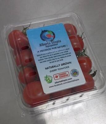 Wholesale Cherry Tomatoes, 12 Pieces