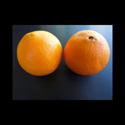 Orange blonde dès