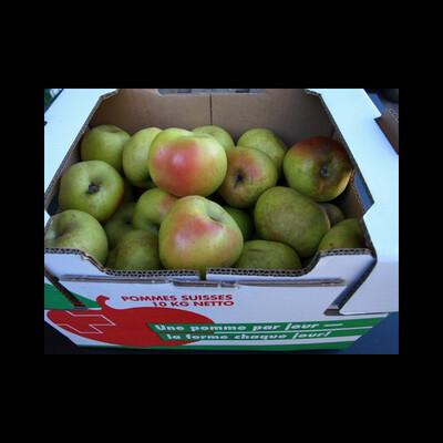 Pomme Canada I dès