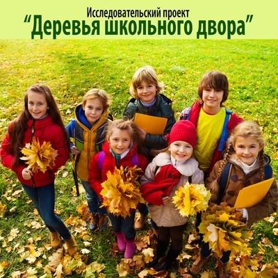 """Исследовательский проект """"Деревья школьного двора"""""""
