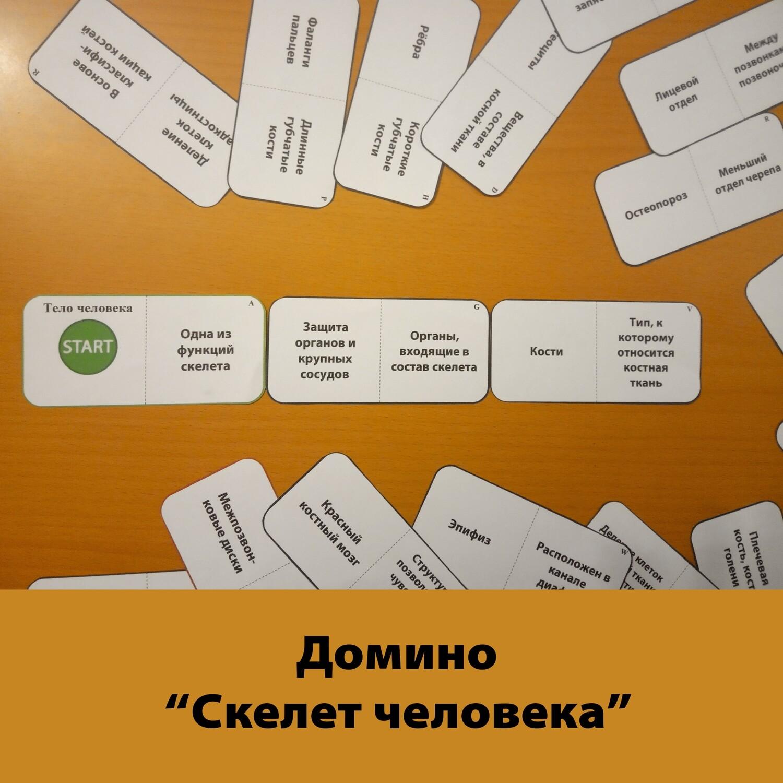 "Домино ""Костная ткань"""