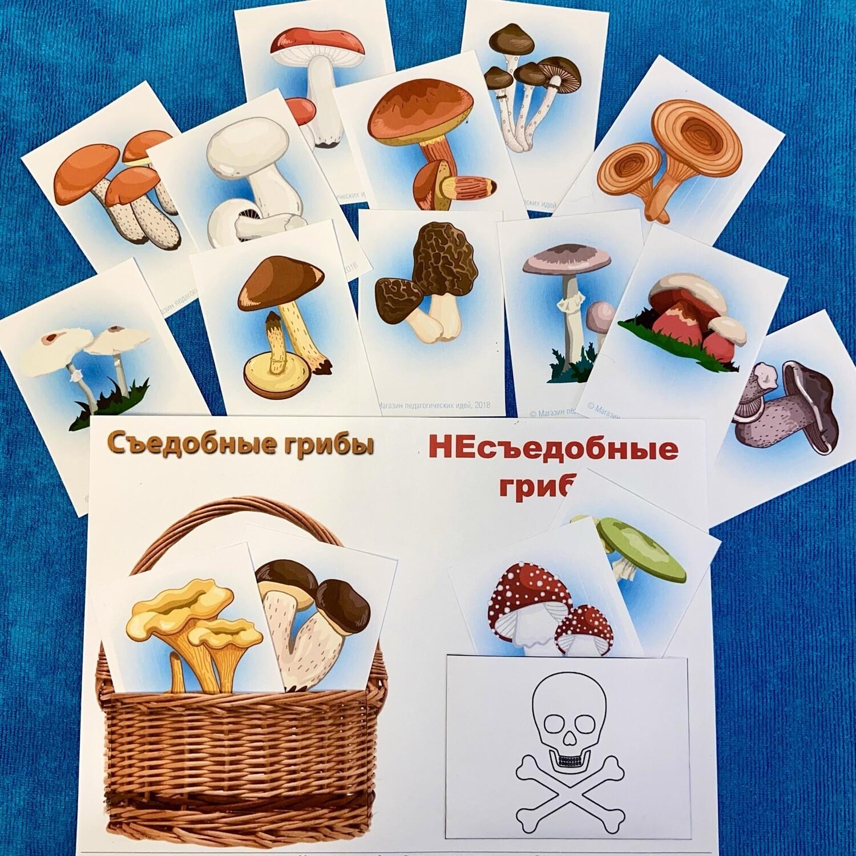 """Мини-карточки для сортировки """"Съедобные и несъедобные грибы"""""""
