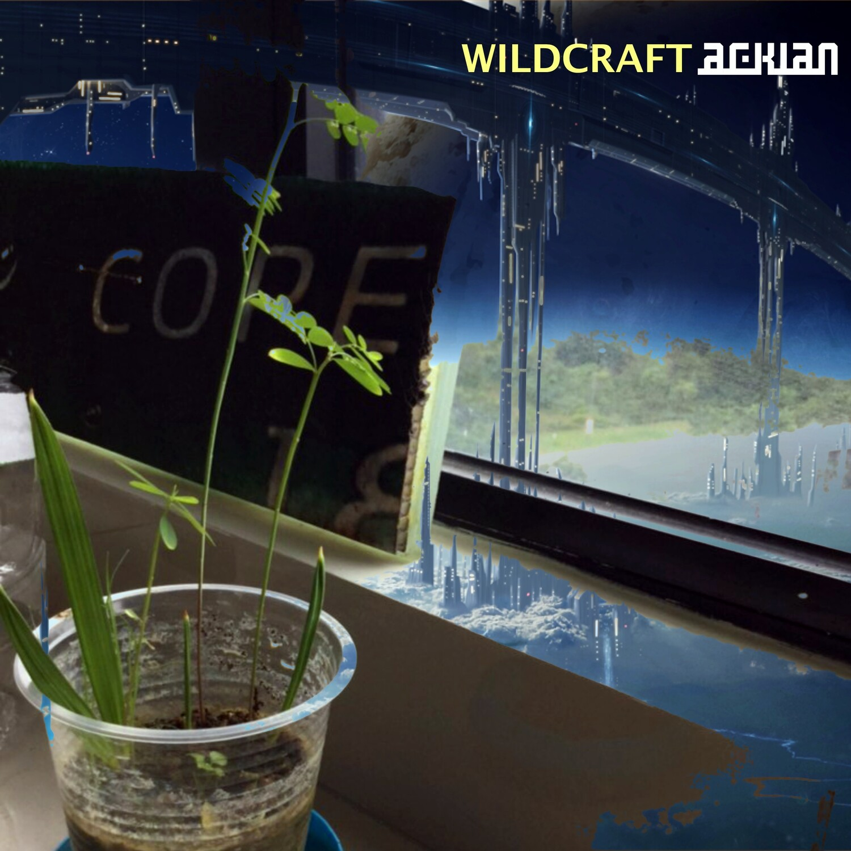 Wildcraft (Vinyl)