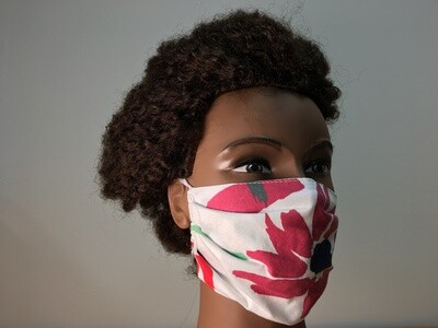 Reusable Pleated Style Facemask