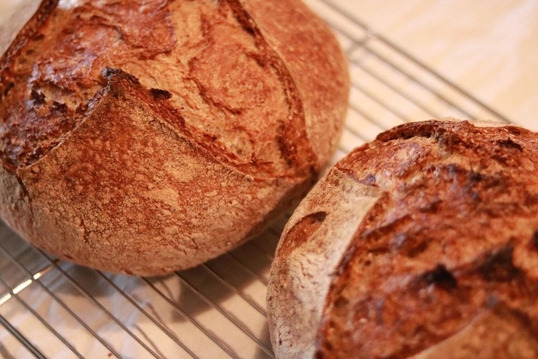 Whole-Wheat Sourdough