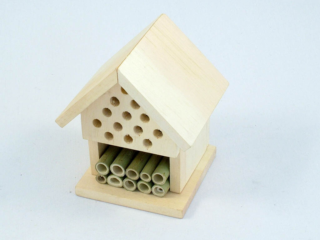 Ladybird and Insect Hotel