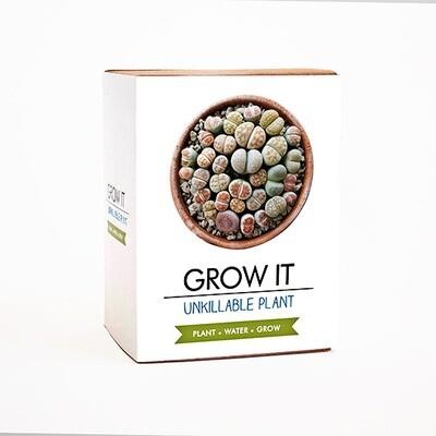 Grow It: Un-killable Plant