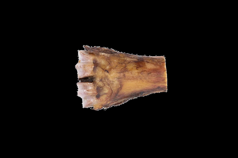 Beef Shin Bone - Half