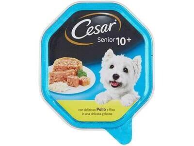 CESAR SENIOR 10+POLLO-RISO 150gr 11856
