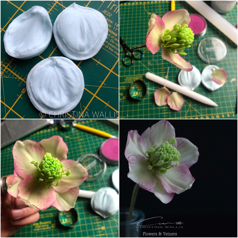 HELLEBORE / Winter Rose  3 X Veiner Set + Cutters  (Optional)
