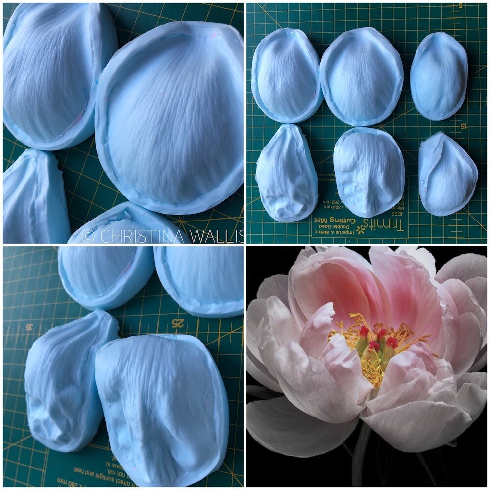 Coral PEONY Veiner Set of 6 + 6 Cutters ( Optional )