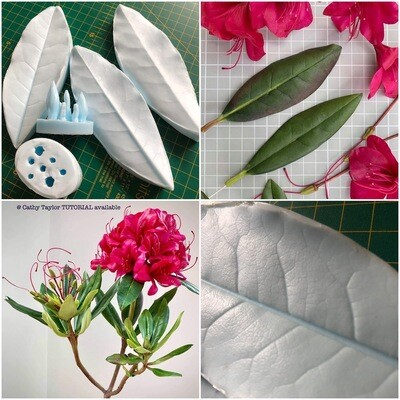 RHODODENDRON Leaf Veiner + Mold + 3 Cutters  (Optional)
