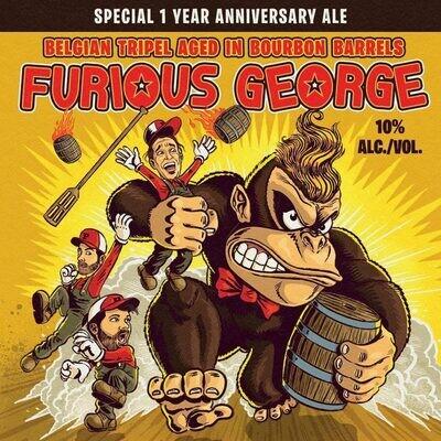 Paperback Furious George