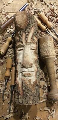 Awaken Forest Spirit : Esperit del Bosc despert : Espiritu del Bosque despierto