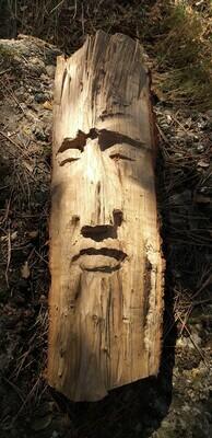 Awaken Forest Spirit : Esperit del Bosc despert : Espíritu del Bosque despierto