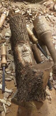 Sleeping Forest Spirit : Esperit del Bosc adormit : Espíritu del Bosque dormido
