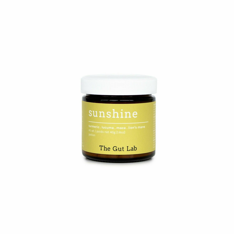 The Gut Lab Sunshine