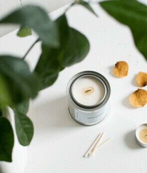 Mala The Brand Succulent Candle