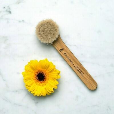 PA Facial Dry Brush