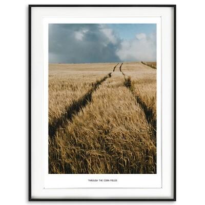 Through the Corn Fields