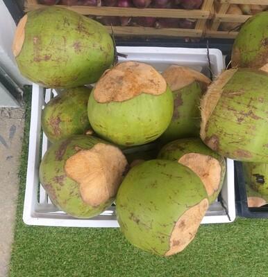 Coco de agua (UD)