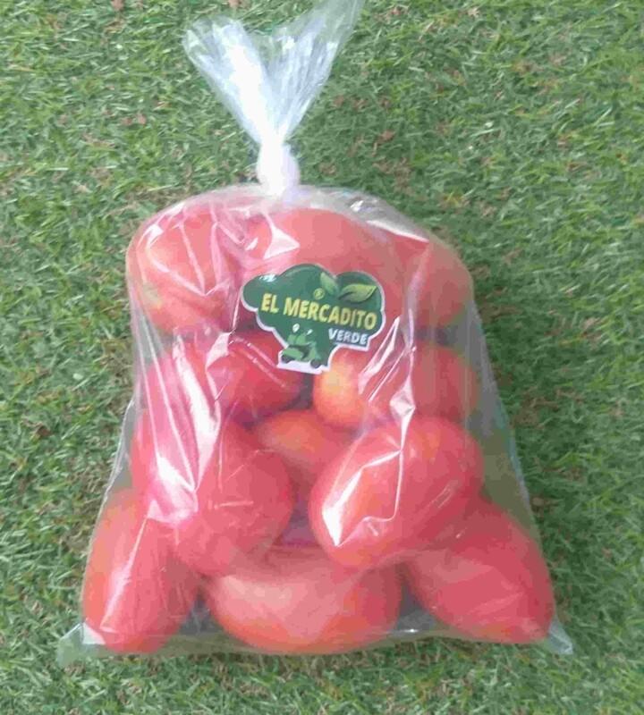 Tomate bugalu (LB.)