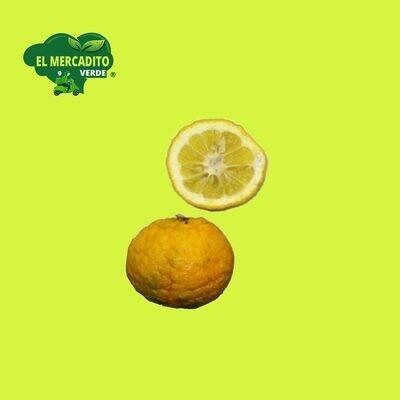 Naranja agria (UD.)