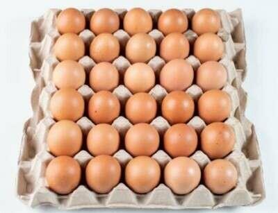 Huevos marrones (30) UD