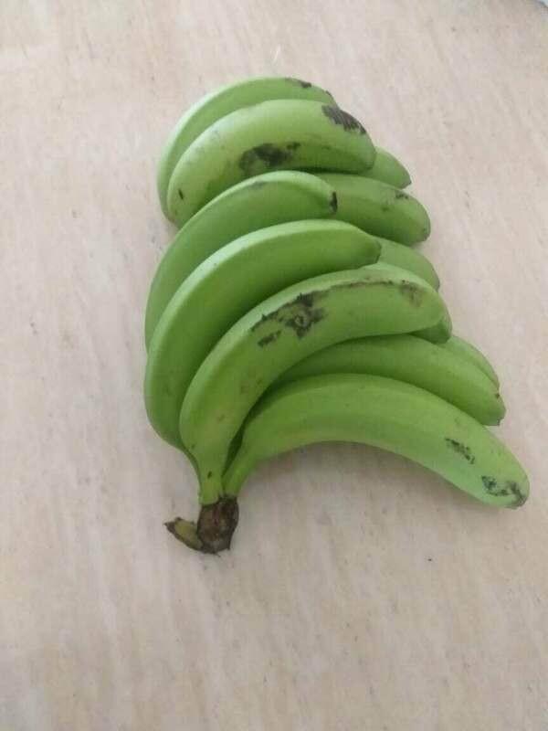 Guineo verde (UD.)