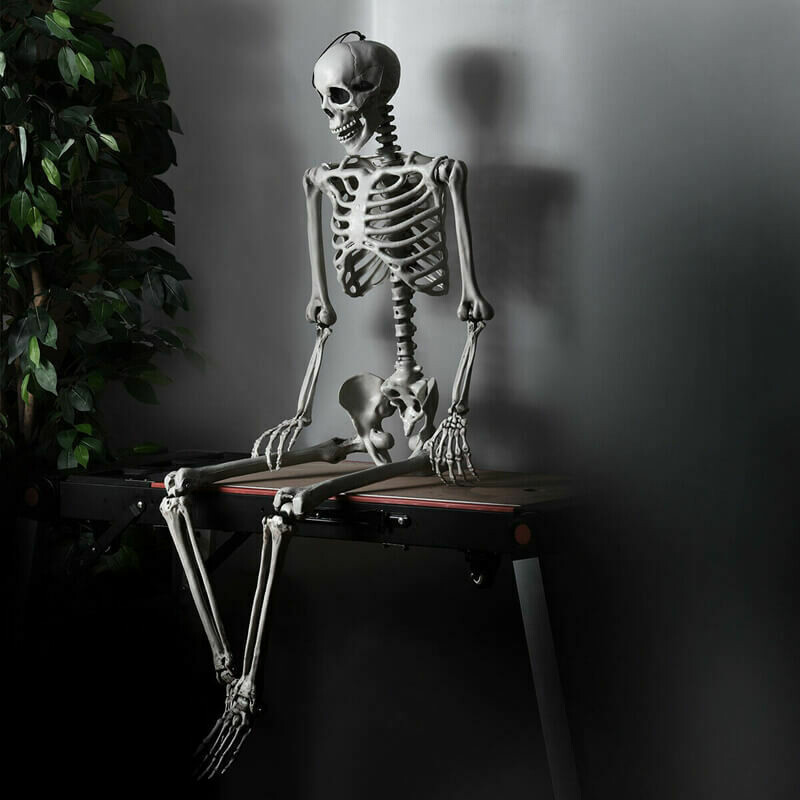 Halloween Skeleton Life Size Realistic Full Body Hanging 5.4 ft