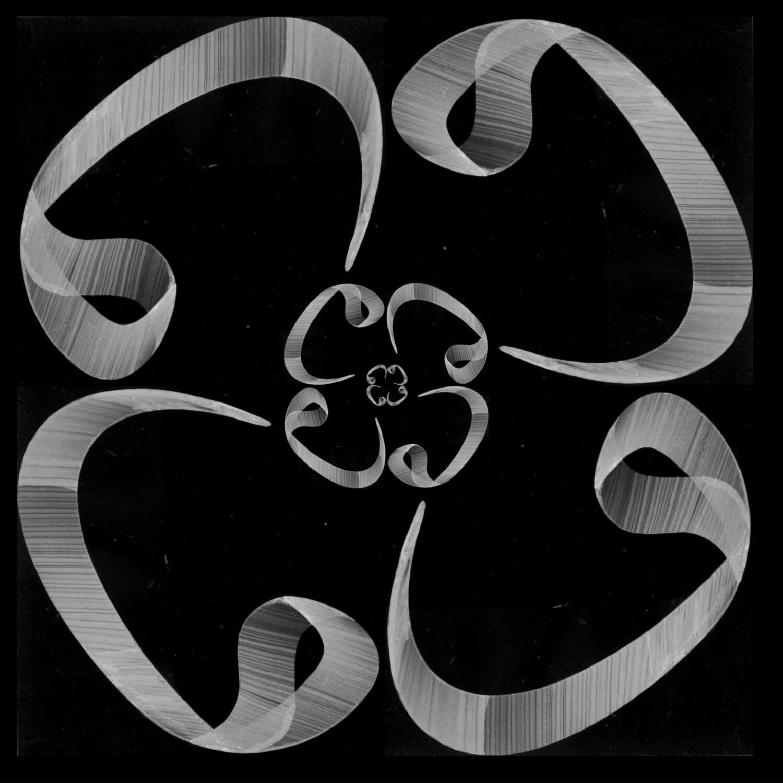 Black & Grey Wow Flower Design Greeting Card
