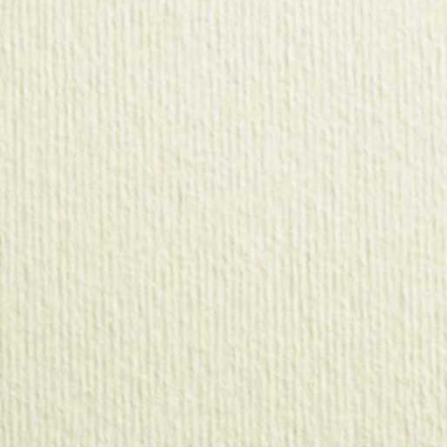 100 Biglietti da visita in cartoncino acquerello avorio