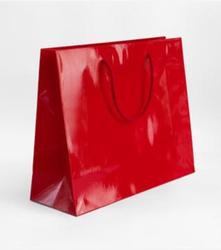 Shopper lusso plastificato, monopatinata, manico cordoncino - cm 24x10x32 - 190 gr/mq