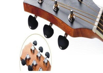 Machine Head tuning pegs iMG461