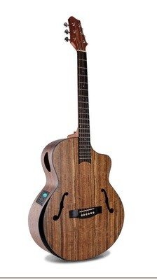 Acoustic Electric Guitar Walnut built in Tuner PPL3465