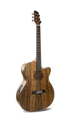 Acoustic Electric Guitar Walnut Built in tuner PPG924