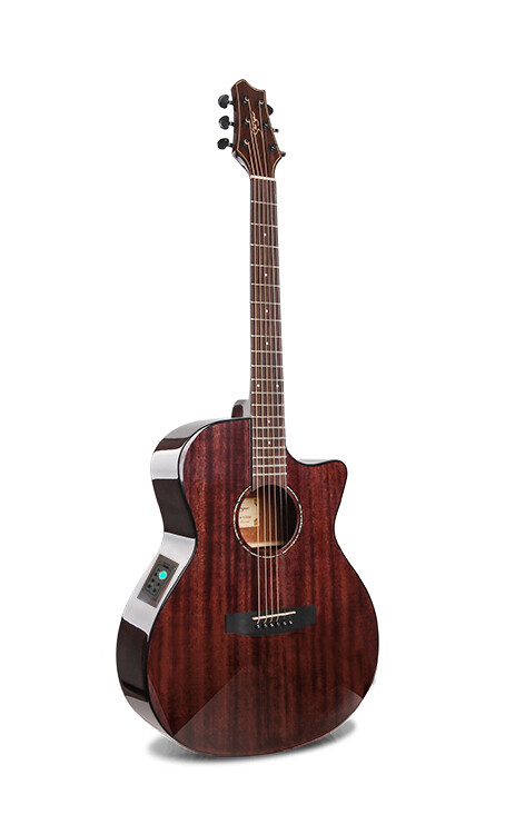 Acoustic Electric Guitar Built in Tuner Solid Top Mahogany Brown PPL6875