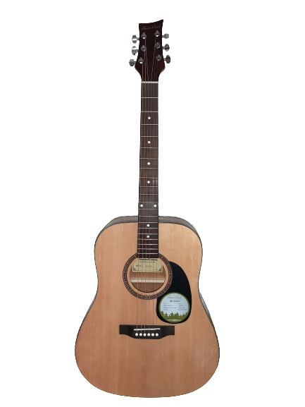 Acoustic Guitar Beaver Creek BCTD101 Natural 41 inch full size