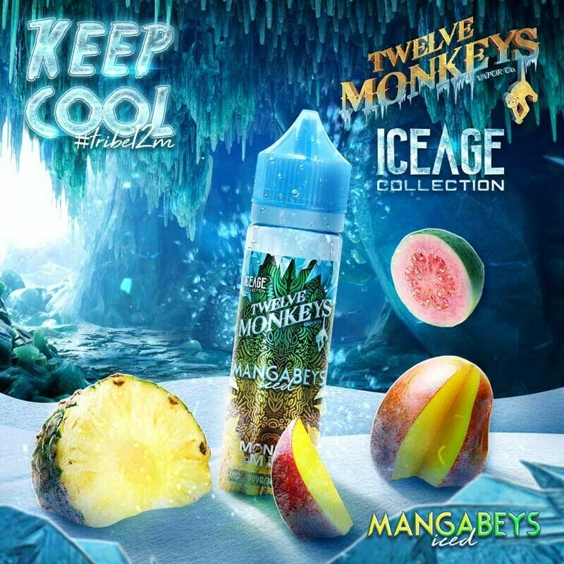MANGABEYS ICED 50ML - TWELVE MONKEYS