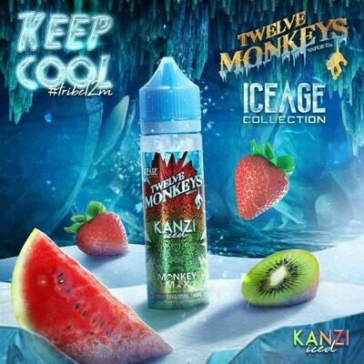 KANZI ICED 50ML - TWELVE MONKEYS